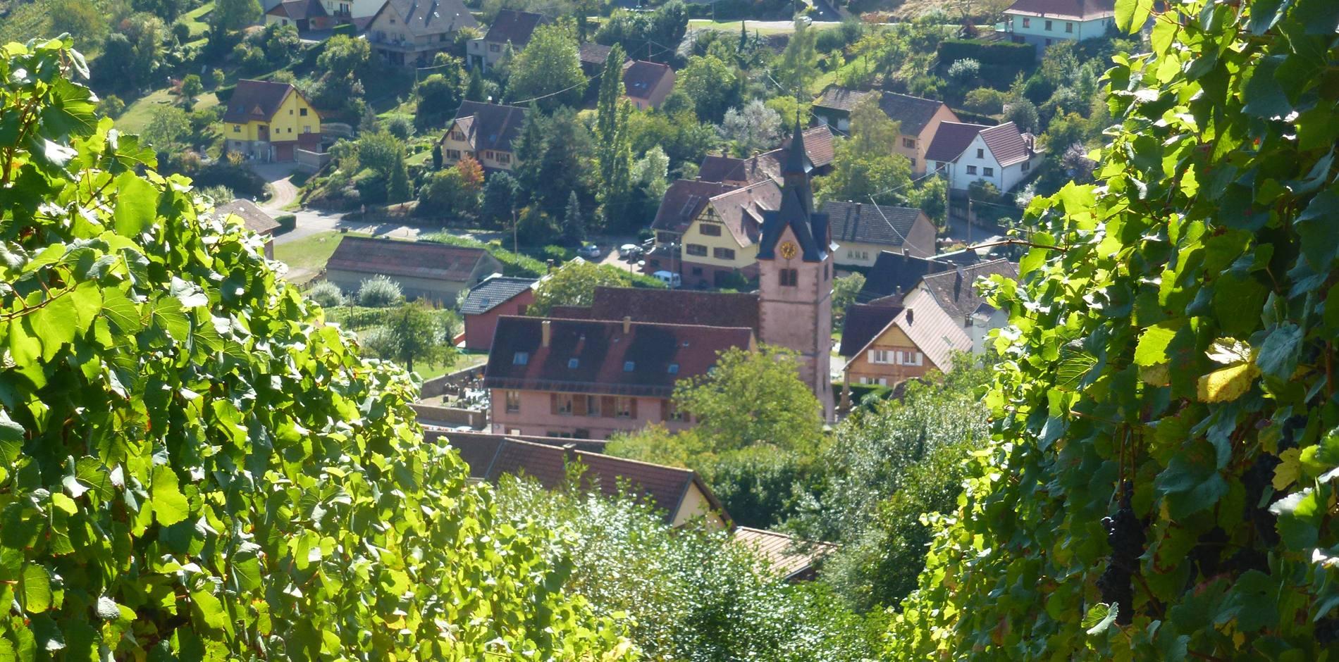 Domaine Borès à Reichsfeld