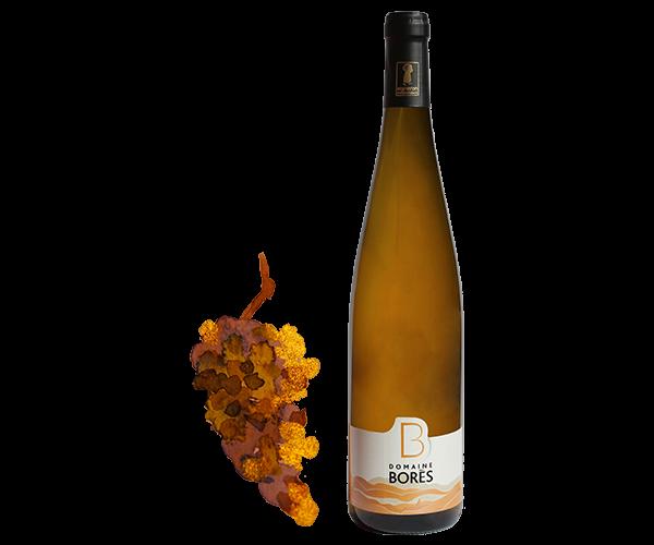 pinot gris scriesling schieferberg vendanges tardives Vin d'Alsace Domaine Borès Reichsfeldhieferberg vendanges tardives Vin d'Alsace Vendanges Tardives Domaine Borès Reichsfeld
