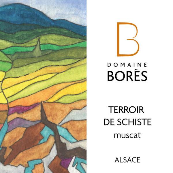 Vin d'Alsace Muscat Terroir de Schiste 2018 du Domaine Borès Domaine Borès