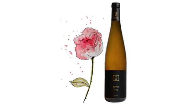 gewurztraminer_Bores_numero_12_Vin d'Alsace Domaine Borès Reichsfeld