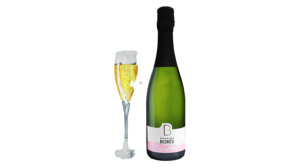 cremant_riesling_brut_Vin d'Alsace Domaine Borès Reichsfeld