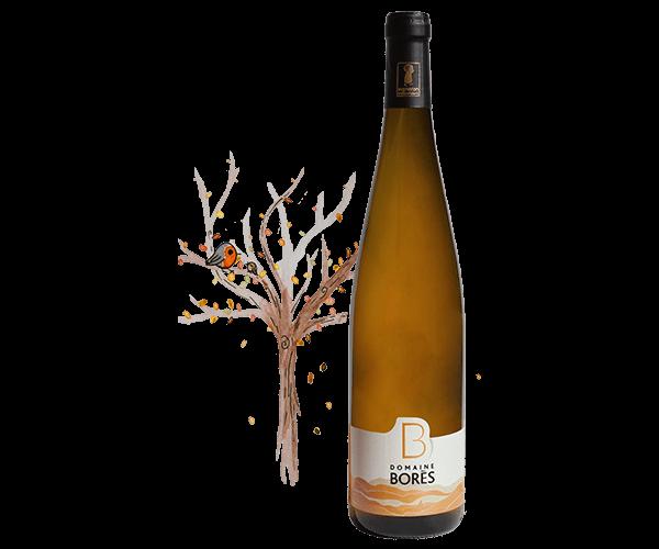 pinot gris schieferberg vendanges tardives Vin d'Alsace Vendanges Tardives Domaine Borès Reichsfeld