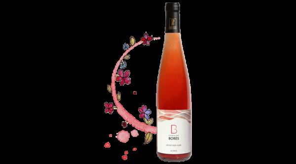 pinot_noir_rose Vin d'Alsace Domaine Borès Reichsfeld