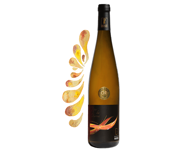 riesling_reve_de_pierres_2017_Vin d'Alsace Domaine Borès Reichsfeld