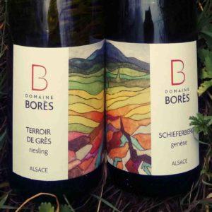 etiquette label Domaine Bores terroir