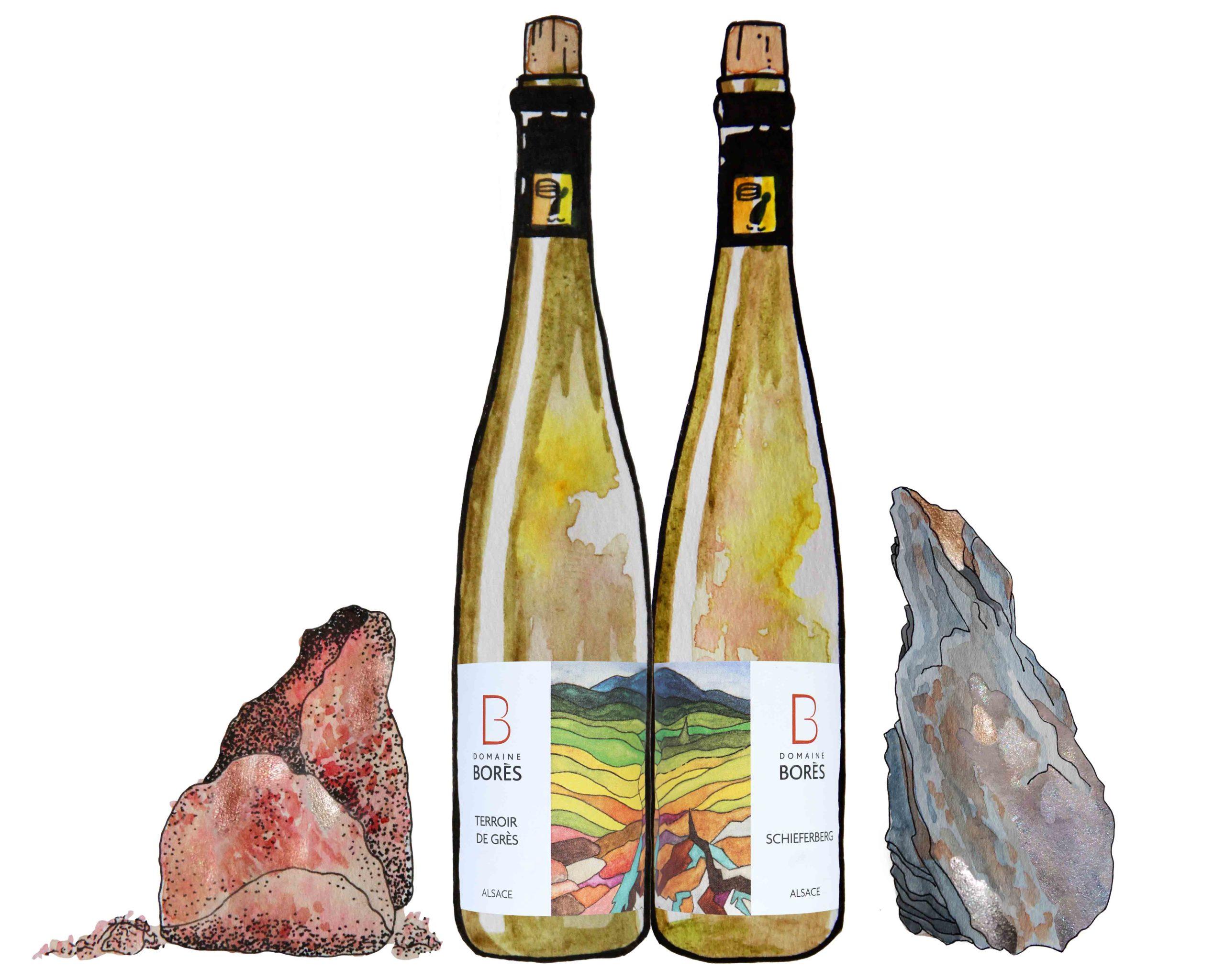 Vin de Terroir Sohlenberg Terroir de Grès et Permien et Schieferberg Terroir de Schiste unique en Alsace - Domaine Bores Alsace Reichsfeld